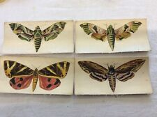 4 from a set of 6 - R.J. Lea Silk Moths Large - Golden Knight Cigarettes