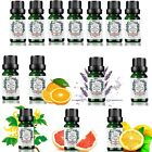100% TOP GRADE Pure NATURAL Professional Aromatherapy Essential Oils UK 10ML