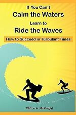If You Can't Calm the Waters Learn to Ride the Waves: How to Succeed in Turbulen