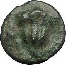 RHODES Island Off CARIA 394BC Nymph Rhodos ROSE Ancient Greek Coin i49613