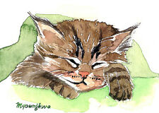 ACEO Limited Edition- Sleeping little kitty, Art card by Anna Lee, Cat lovers