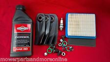"Victa Lawn Mower19"" Service Kit, Blades CA09319S, Filters 491588s, Plug, Oil"