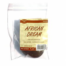 1 African Dream Herb Seed (Entada rheedii) DIRECTLY FROM THE SOURCE