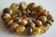 Huge Antique Raw Natural Baltic Amber a Superb Large 43 Beads Necklace