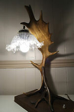 VINTAGE  FALLOW DEER ANTLER LAMP, HANDMADE VERY UNIQUE GIFT, BEAUTIFUL