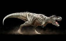 Framed Print - Roaring T-Rex Dinosaur (Picture Poster Prehistoric Jurassic Park)