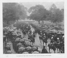 LONDON Trooping of the Colour at Horse Guards Parade - Antique Print 1897