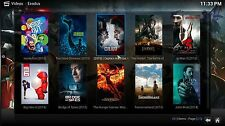 MODIFIED Amazon FIRE TV Stick MOVIES XXX SPORTS 17.1 LOTS OF EXTRAS Fast Ship!