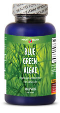 Spirulina Tablets- Klamath Blue Green Algae 500mg Health Pills 1 Bottle 60 Caps
