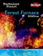 Forest Furnace: Wild Fires (Turbulent Planet)