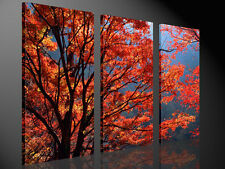 Stretched Canvas Print - AUTUMN Red Leaves Nature Large Wall Art e2394