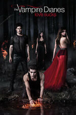 "THE VAMPIRE DIARIES - TV SHOW POSTER / PRINT (THE CAST / WOODS) (SIZE 24 x 36"")"