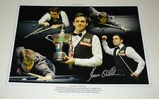RONNIE O'SULLIVAN SNOOKER WORLD CHAMPION PERSONALLY SIGNED AUTOGRAPH 16X12 PHOTO
