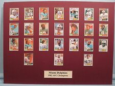 The Miami Dolphins coached by Don Shula are the 1982 AFC Champions