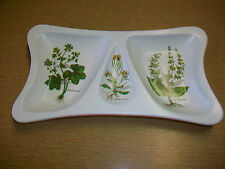 Poole England Pottery Divided Serving Dish w/ Plant Designs
