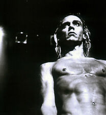 IGGY POP POSTER PAGE . THE STOOGES . P3