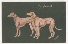 Espinassy, Hunting Dogs, Greyhounds Postcard, B268