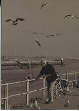 POST CARD OF A BLACK AND WHITE PICTURE OF A MAN NEAR THE WATER WITH SEA GULLS