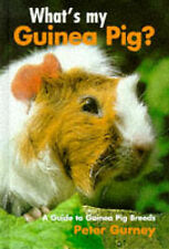 What's My Guinea Pig? by Peter Gurney
