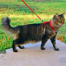 New Einstellbare Cat Hundehalsband Leine Geschirr Rot-Gurt-Bügel Sicherungsseil