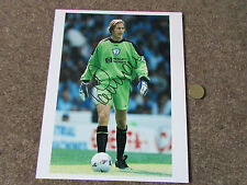 Ian WALKER  Tottenham  Goalkeeper  Original Hand Signed  10 X 8   Press Photo