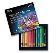Watercolor Crayon Mungyo Professional Gallery 12 Colors Artist Drawing MAC12
