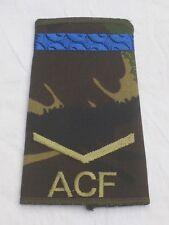 Rangschlaufen:Lance Corporal, ACF,DPM, Army Cadet Force,blauer Streifen