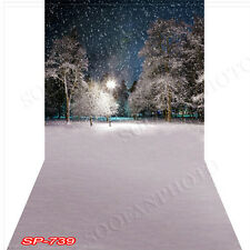 Christmas 10'x20' Computer-painted (CP)Scenic Vinyl Background Backdrop SP739B88
