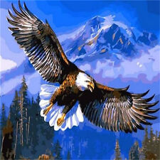 FD4181 DIY Paint By Number On Canvas Digital Oil Painting Kit Flying Eagle♫
