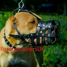 Pit Bull Muzzles UK Bestsellers | Leather Dog Muzzles for Pitbull & Other Breeds