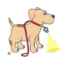 DOG WALKING LIGHT - Leash Flashlight LED Safety Wide Angle Bright Keychain Torch