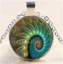 Fibonacci Spiral Photo Cabochon Glass Tibet Silver Chain Pendant Necklace