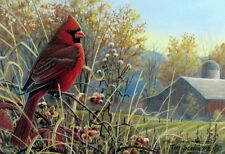 Autumn Crimson By TIm Schultz Cardinal Signed and Numbered  Print