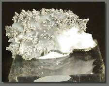 Amazing Native Silver Dyscrasite on White Calcite, Bouismas Mine, Morocco