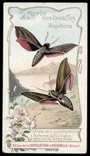 chromo AIGUEBELLE-le monde des insectes papillons SPHINX DE LA VIGNE/DU TITHYMAL