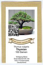 Bonsai - Thymian - Thymus vulgaris (100 Samen)