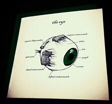The Eye Greetings Card Anatomy Science Green