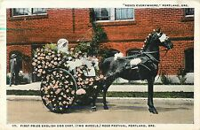 A View of the First Prize English Dog Cart, Rose Festival, Portland OR 1915