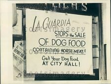 1943 Pet Shop Window Sign Protesting Horse Meat Dog Food NYC Press Photo