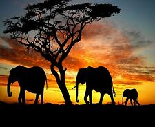 ELEPHANT FAMILY SILHOUETTE  HOME OR OFFICE DECOR COMPUTER MOUSE PAD 9 X 7
