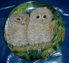 Wedgwood Collectors Plate TAWNY OWL CHICKS - THE BABY OWLS