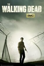 THE WALKING DEAD POSTER ~ RICK BROKEN FENCE 24x36 TV Zombie AMC Andrew Lincoln