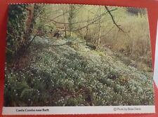 CASTLE COMBE Nr BATH Postcard Snowdrop Wood Long Dean Somerset by Dorothy House