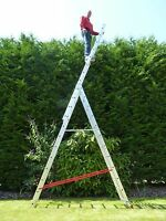 7-12 Rung Combi Combination/Extension/Triple/Treble/3 Section/Multi/Step Ladder
