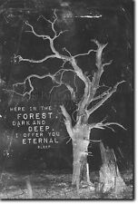 "HALLOWEEN HOLIDAY ART PRINT 05 PHOTO POSTER - ""I OFFER YOU ETERNAL SLEEP"""