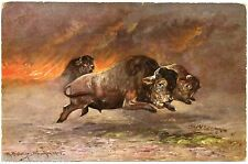 illustrateur M. MÜLLER . Animaux sauvages . Les BISONS . Wild animals . BUFFALO