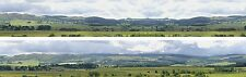 """Scenic Backdrop """"Hills and Dales """" N208A (10' L x 9"""" H) Premier N Scale"""