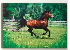 """Running Horse"" Wall Art, Big Sky Carvers, On the Wild Side, Home Accents Horse"