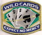 "Space Above & Beyond Wildcards Gold Thread Patch-3.5"" Wide- FREE S&H (ITCPA-06)"