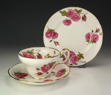 Vintage Foley China - Century Rose - Rose & Insect Decorated Trio - Lovely!